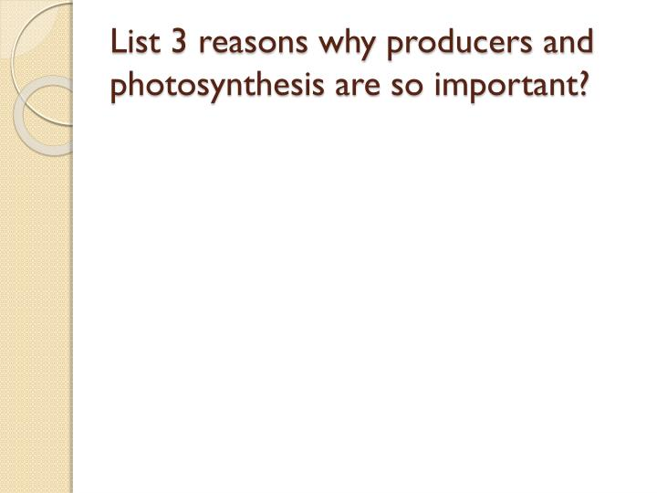 List 3 reasons why producers and photosynthesis are so important?