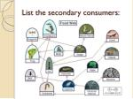 list the secondary consumers