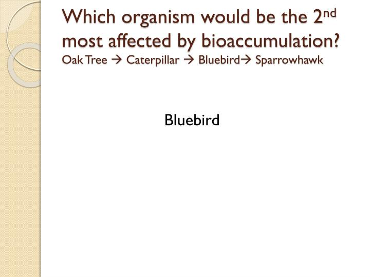 Which organism would be the 2