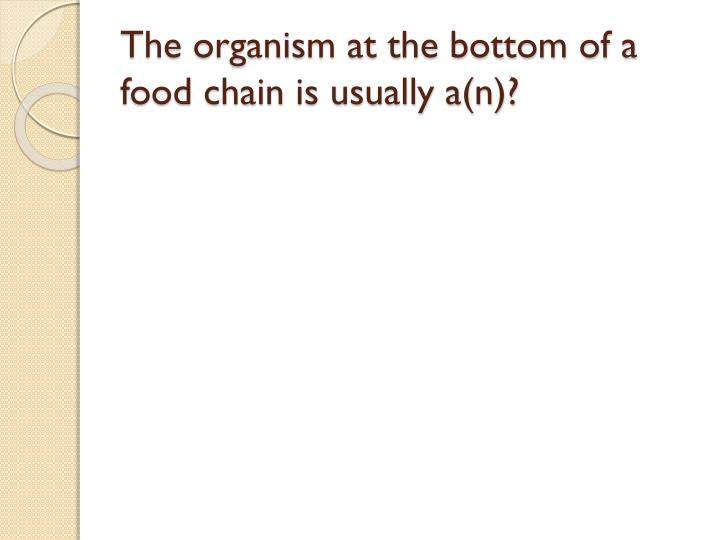 The organism at the bottom of a food chain is usually a(n)?