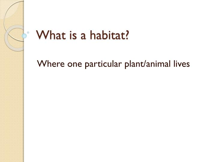 What is a habitat1