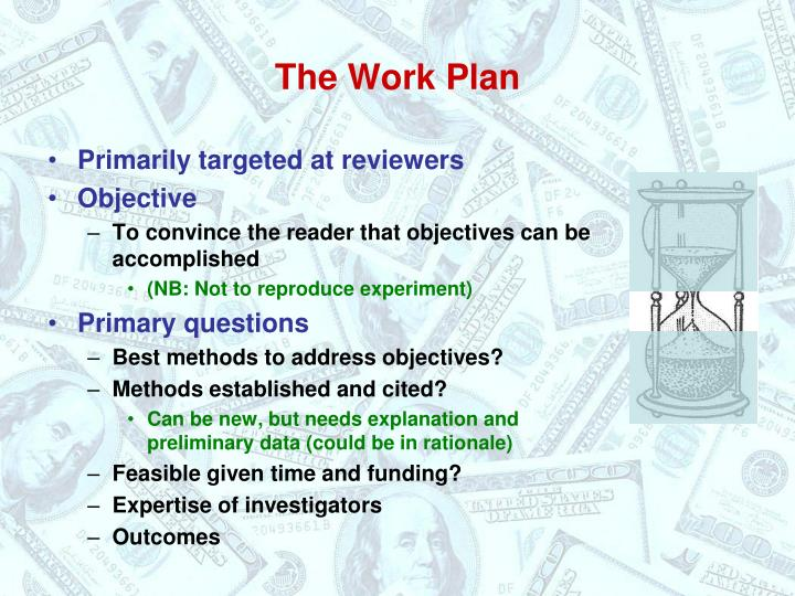 The Work Plan