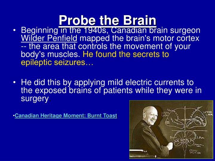 Probe the Brain