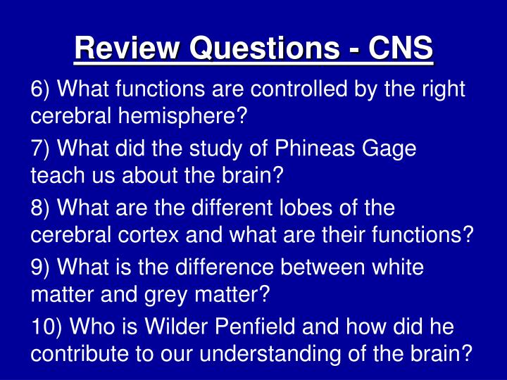 Review Questions - CNS