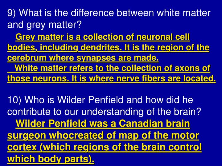 9) What is the difference between white matter and grey matter?