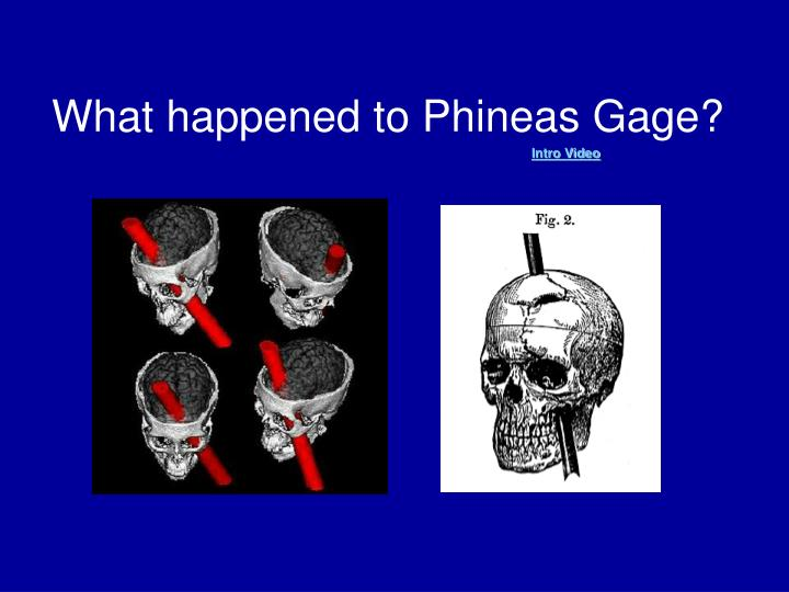 What happened to Phineas Gage?