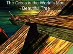 the cross is the world s most beautiful tree