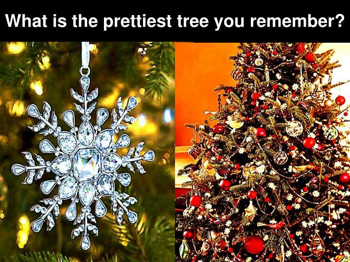 What is the prettiest tree you remember?