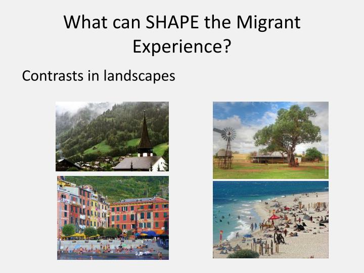 What can SHAPE the Migrant Experience?