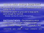 why is solar energy important