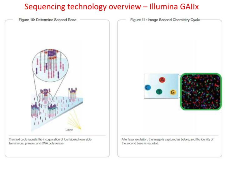 Sequencing technology overview –