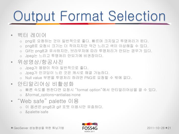 Output Format Selection