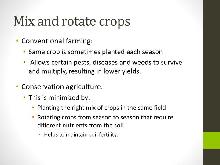 Mix and rotate crops