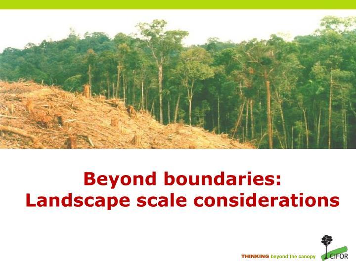 Beyond boundaries: