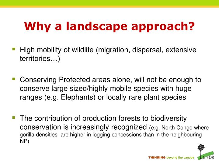 Why a landscape approach?