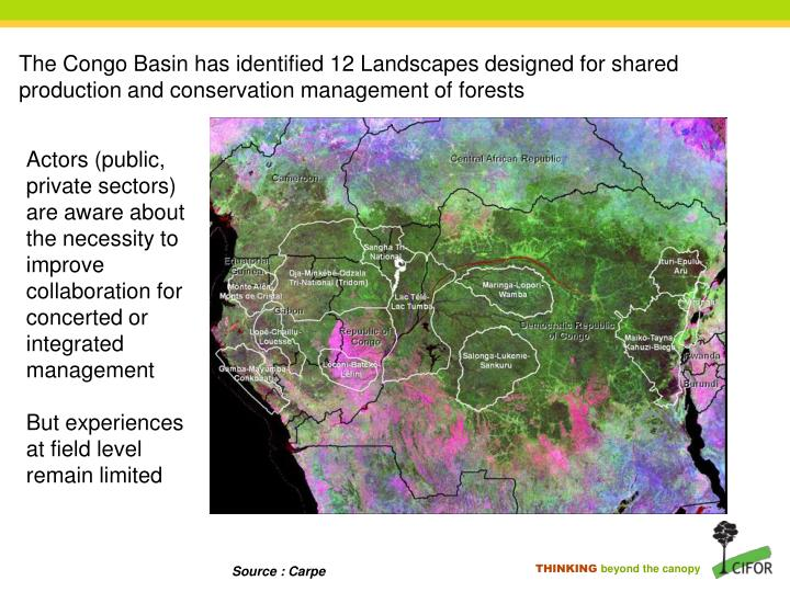 The Congo Basin has identified 12 Landscapes designed for shared production and conservation management of forests