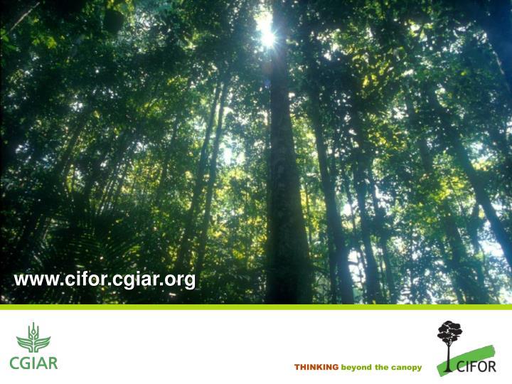 www.cifor.cgiar.org