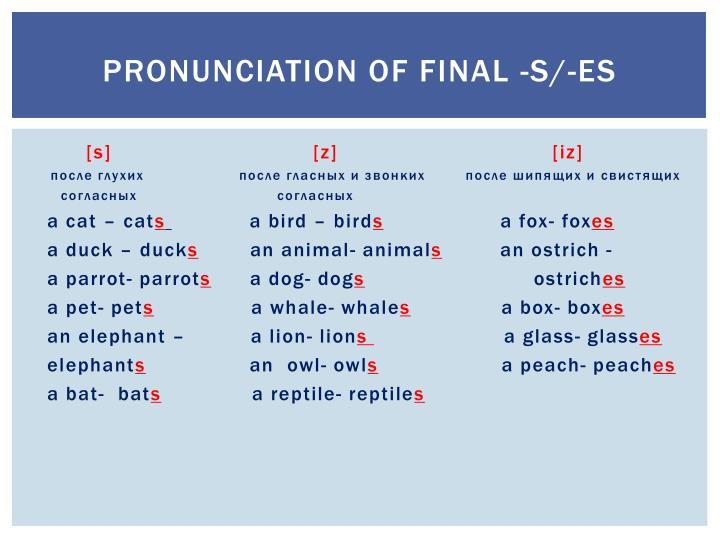 Pronunciation of Final -S/-ES