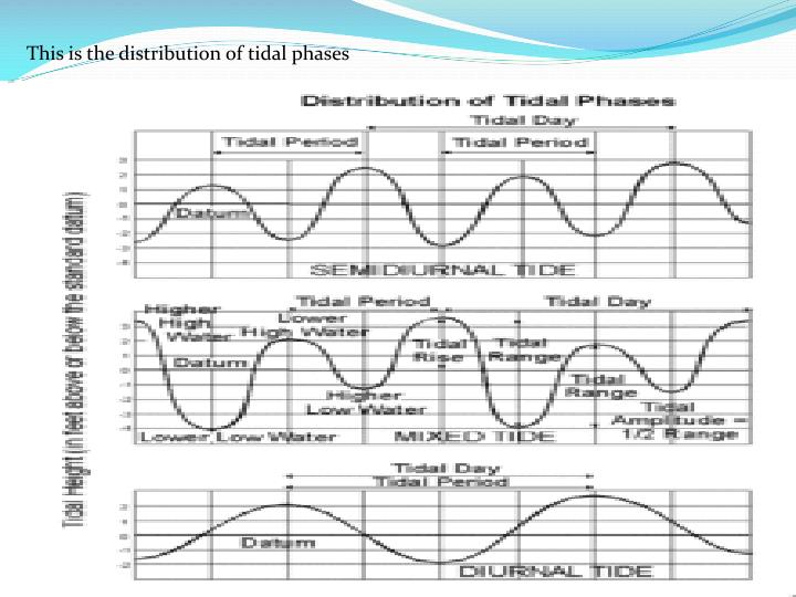 This is the distribution of tidal phases