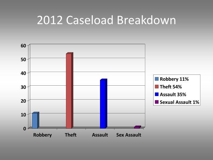 2012 Caseload Breakdown