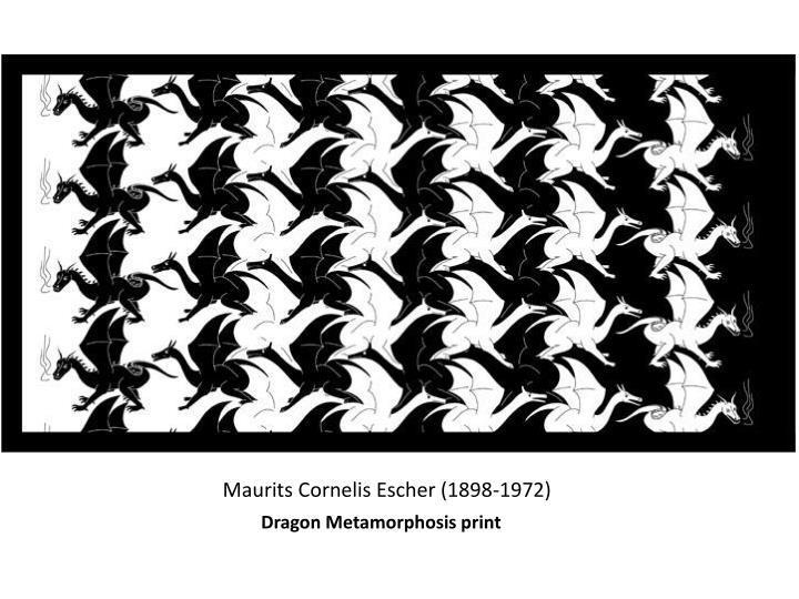 Dragon Metamorphosis print