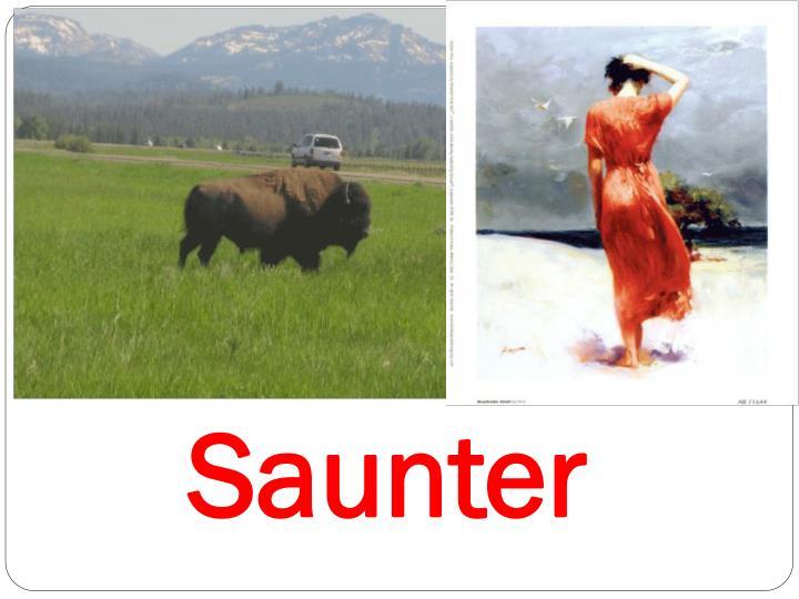 Saunter