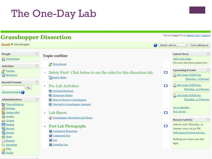 The One-Day Lab