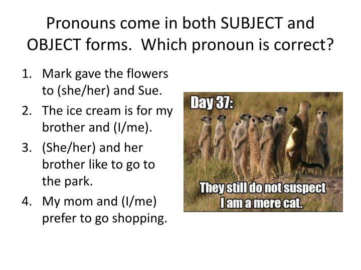 pronoun and mark Grammarist is an english grammar website which provides a list of pronouns  which includes indefinite pronouns, possessive pronouns, and more.