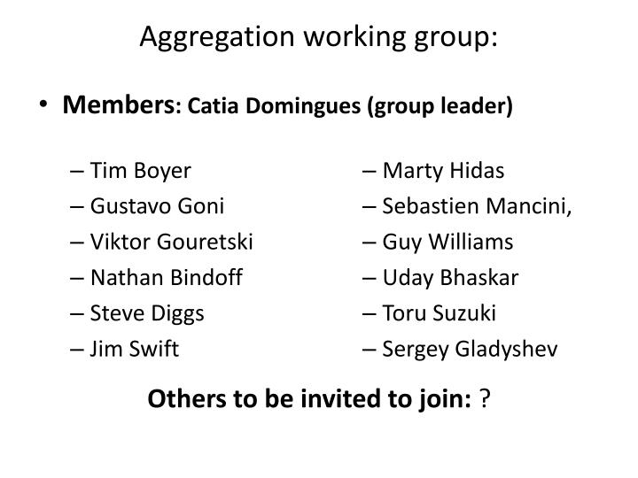 Aggregation working group: