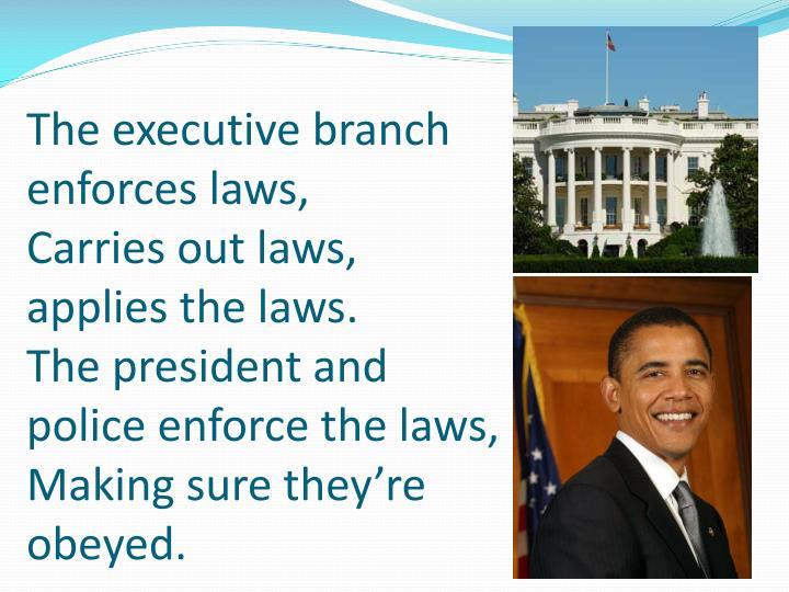 The executive branch enforces laws,