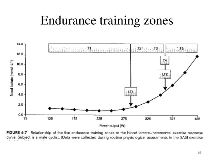 Endurance training zones