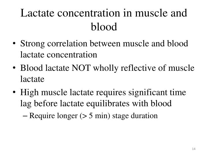 Lactate concentration in muscle and blood