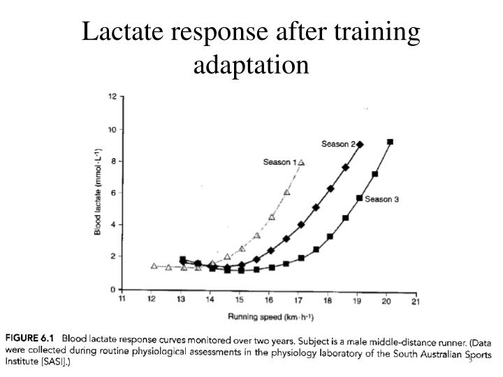Lactate response after training adaptation
