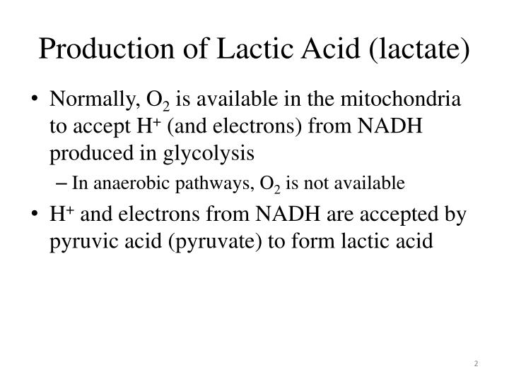 Production of lactic acid lactate