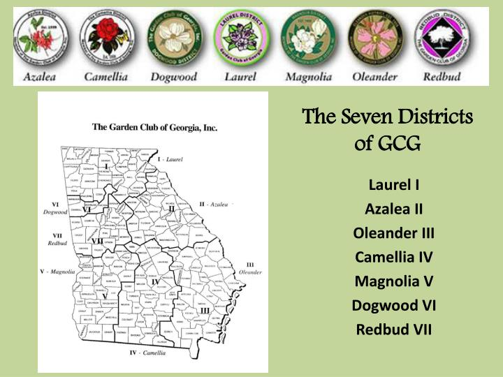 The Seven Districts of GCG