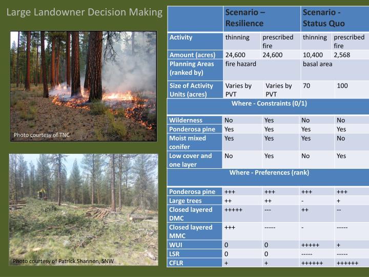 Large Landowner Decision Making