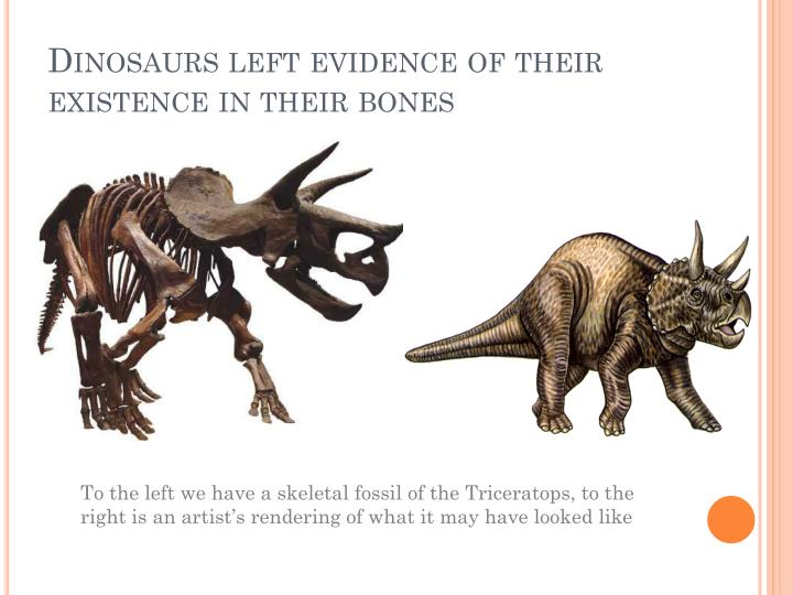 Dinosaurs left evidence of their existence in their bones