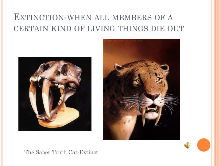 Extinction-when all members of a certain kind of living things die out