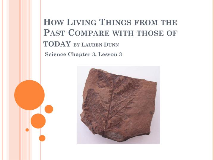How living things from the past compare with those of today by lauren dunn