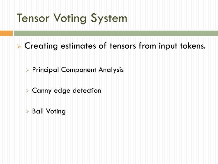 Tensor Voting System