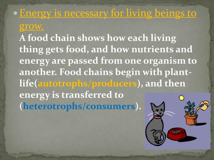 Energy is necessary for living beings to grow.