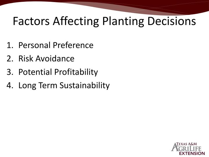 Factors Affecting Planting Decisions