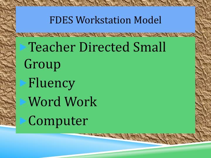 FDES Workstation