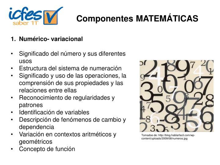 Componentes MATEMÁTICAS
