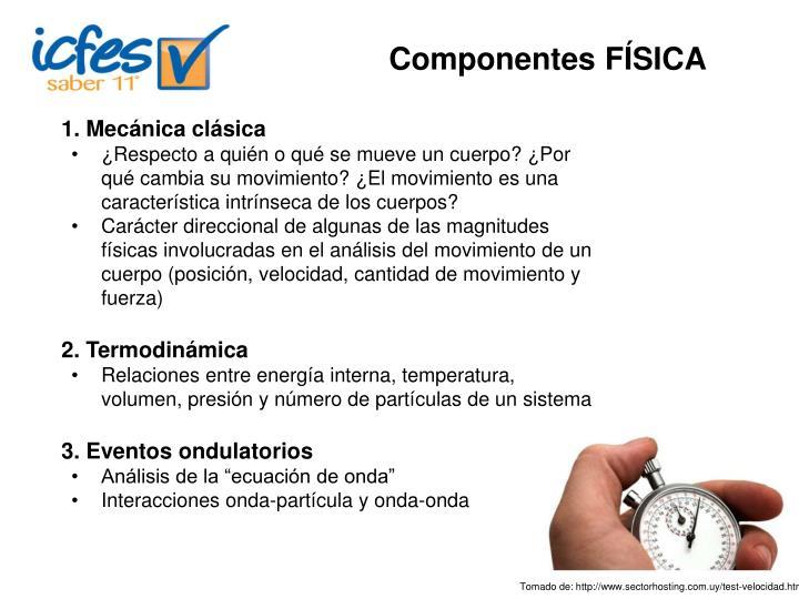 Componentes FÍSICA
