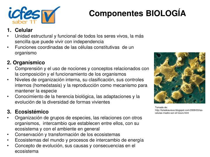 Componentes BIOLOGÍA