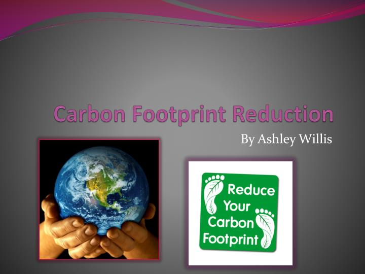 reducing the carbon footprint essay
