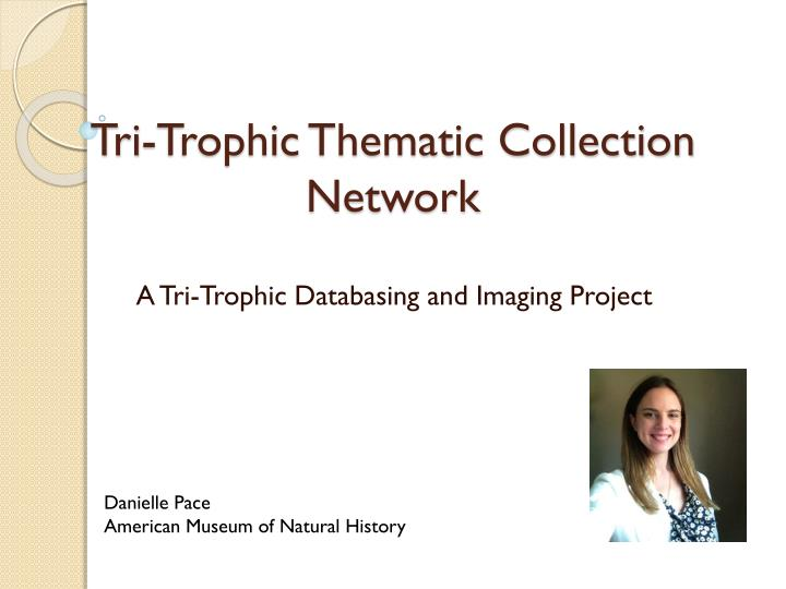 Tri trophic thematic collection network