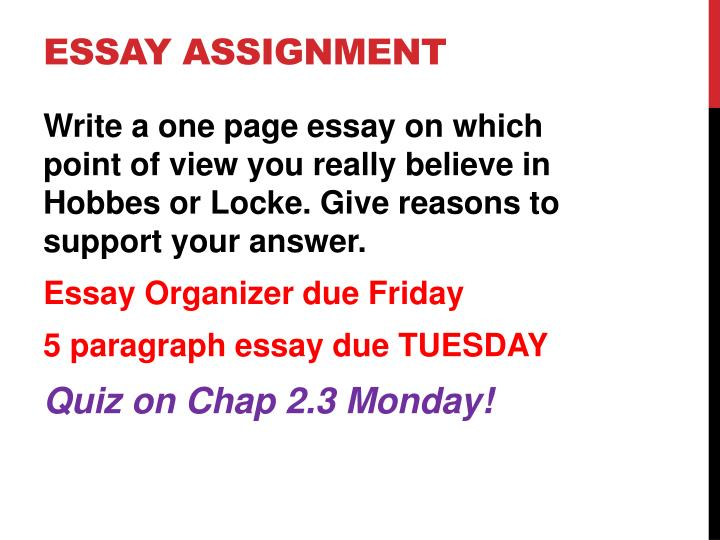 Essay Assignment