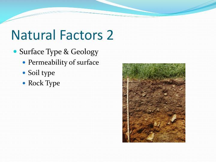 Natural Factors 2